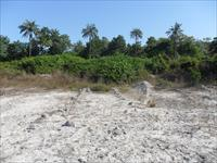 land for sale in sanyang