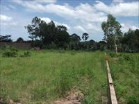 200m x 200m land in Nyofelleh