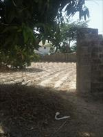 land for sale in Brusubi Phas...