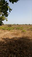 Empty Land For Sale @ Sanyang