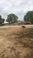 land for sale in Sukuta  D1Mi...